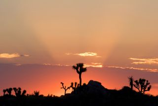 A sunrise in the Mojave Desert of Southern California