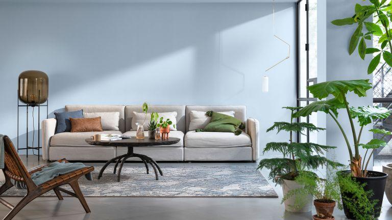 blue living room with grey sofa