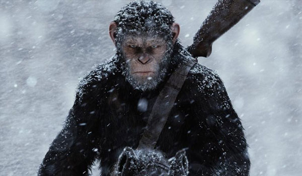 that ape is mad in war for the planet of the apes