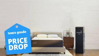 Sealy mattress deals