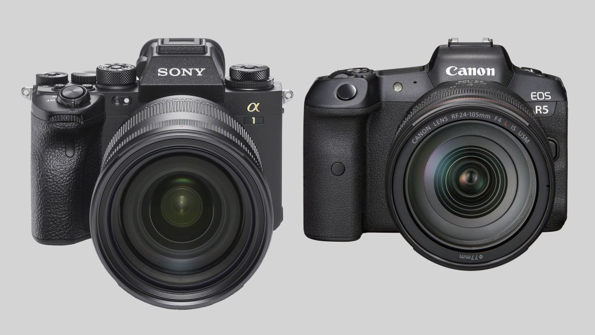 Sony A1 vs Canon EOS R5: Which is the best hi-res 8K camera? - Digital Camera World