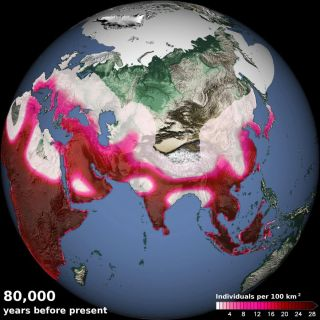 A computer model simulated human density 80,000 years ago, showing the arrival of humans in eastern China and southern Europe as well as migrations out of Africa along vegetated paths in Sinai and the Arabian Peninsula.