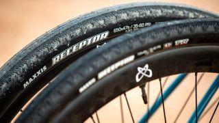 Maxxis Receptor gravel tyre