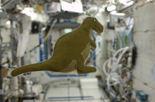 NASA astronaut Karen Nyberg's stuffed toy dinosaur floats on the International Space Station. She made the doll for her son using materials she found on the orbiting outpost
