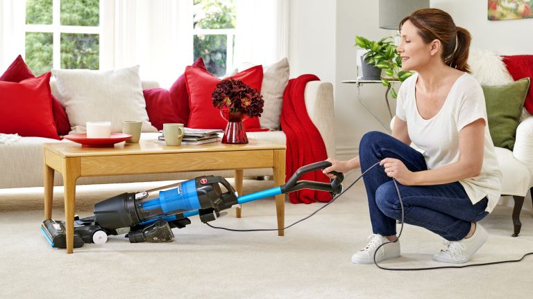 Hoover H-Upright 300 Pets