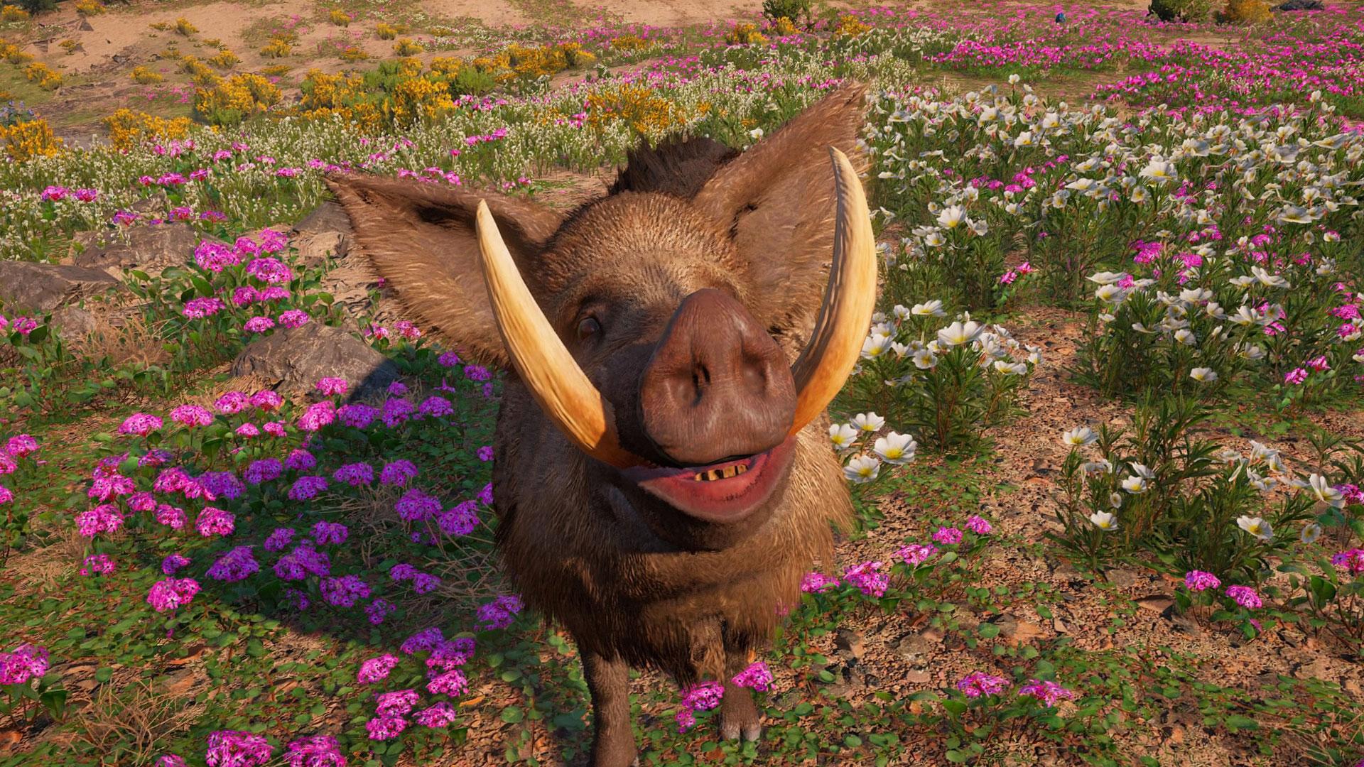 How To Unlock Horatio The Boar In Far Cry New Dawn Gamesradar