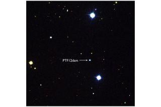 Superluminous Supernova PTF 12dam