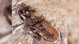 At the ancient necropolis in Corsica, archaeologists found some of the human remains had been buried in amphora pots.