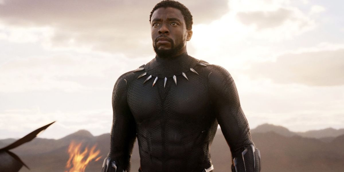 Black Panther T'challa stands triumphant in Wakanda