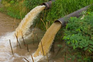 Sewage water flows into a river.