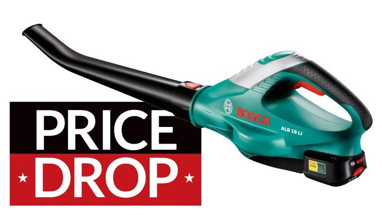 cheap Bosch leaf blower