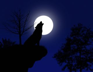 The full moon of January, known as the Full Wolf Moon, arrives Thursday, Jan. 28, at 2:16 p.m. EST (1916 GMT).