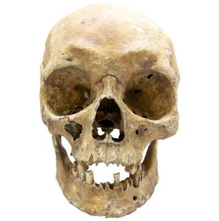 skull of polish army general