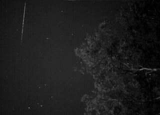 February eta Draconid meteor of Feb. 2011