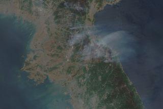 north korea fires