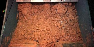 Phoenix Sampling of Martian Soil Delayed