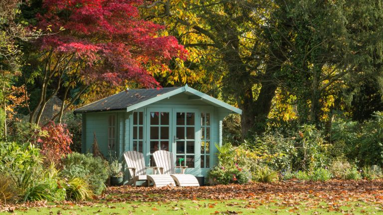 Fall garden with leaves and green shed