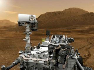 Mars Plant Experiment (MPX)