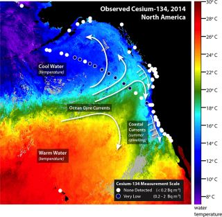 Fukushima radiation Nov. 2014
