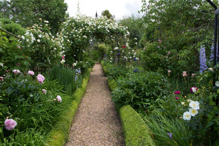 gravel garden path through a rose garden with arch over