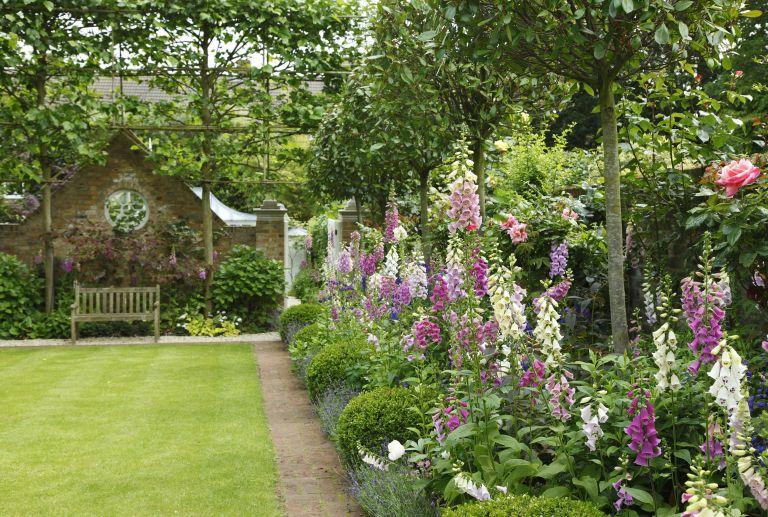 growing cottage garden flowers