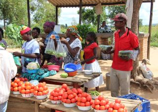 Zimbabwe market