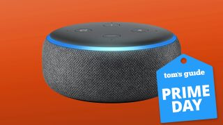 Prime Day Echo Dot deals