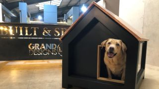 Built & Spaces luxury dog kennel