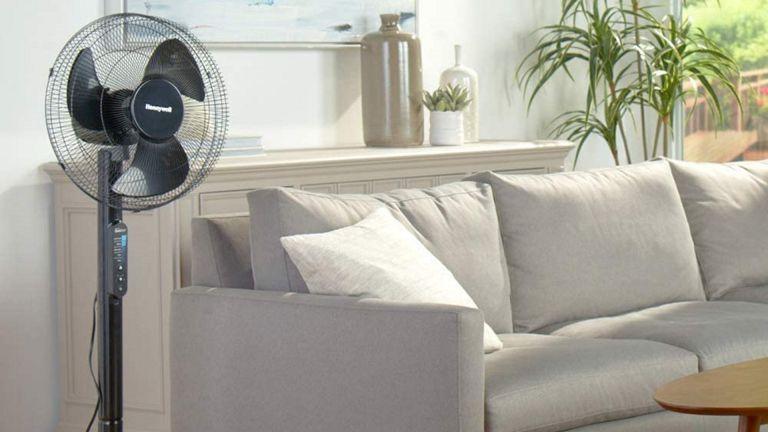 best fan: Honeywell QuietSet Stand Fan in living room