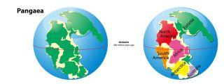 continents, supercontinent, Pangaea
