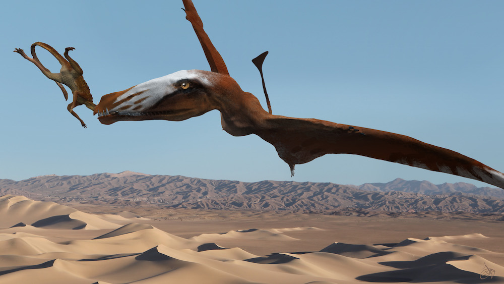 Giant Pterosaur Sported 110 Teeth (and 4 Wicked Fangs) | Live Science