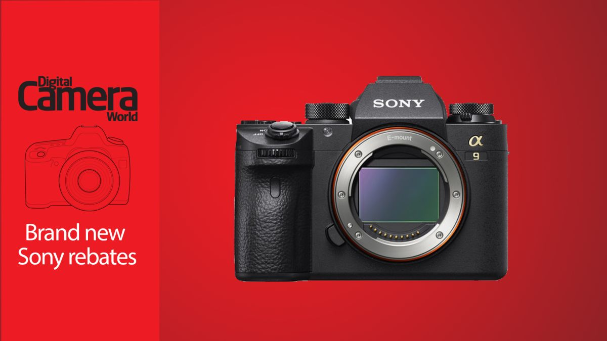 Save up to $1,000 on Sony cameras in these new rebates