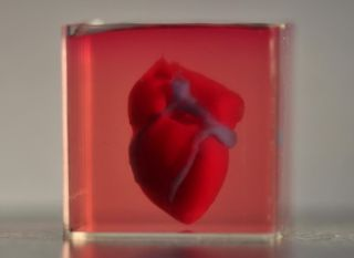 Scientists 3D printed a heart the size of a rabbit's using human tissue.