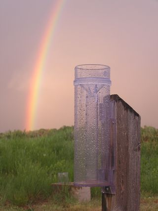 coco rain gauge, citizen science