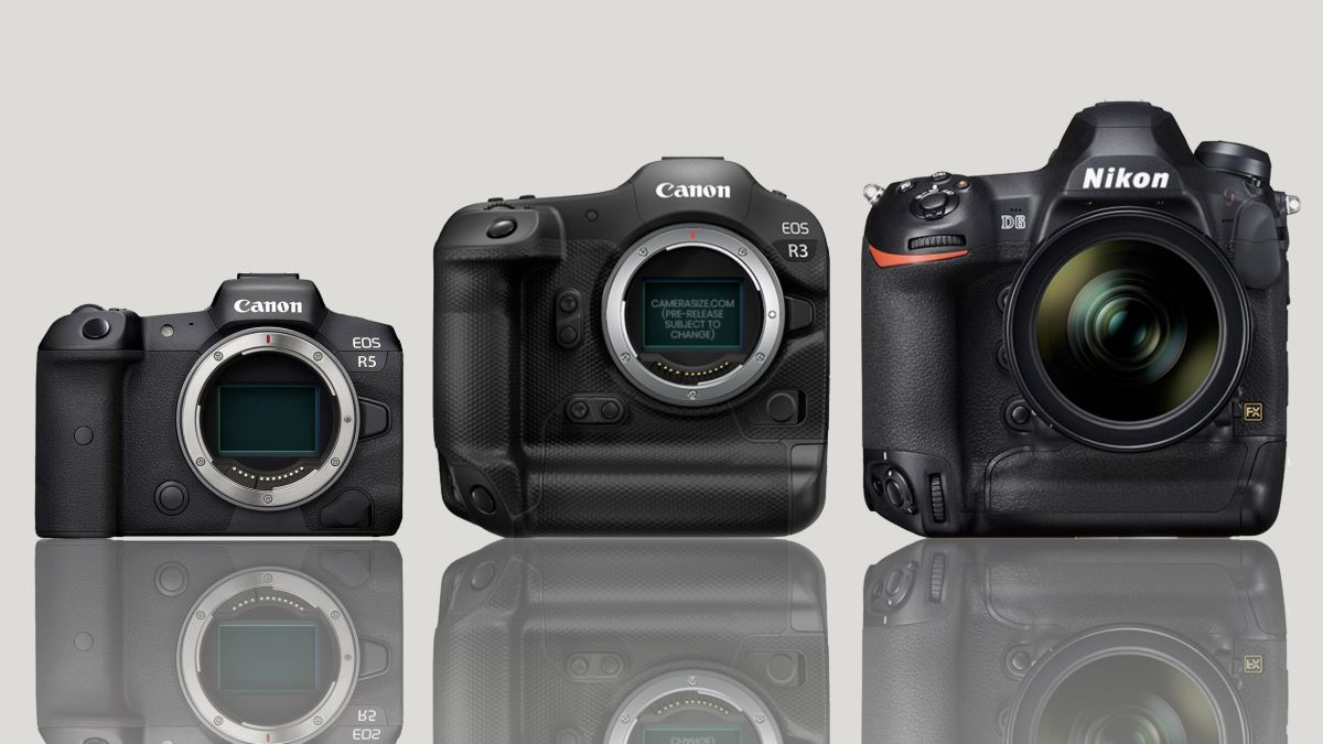 Canon EOS R3 size comparison: DWARFS the R5, smaller than Nikon and Fuji rivals
