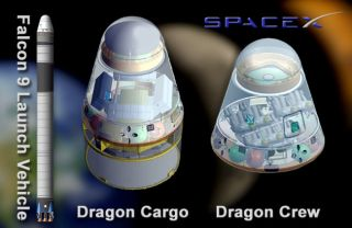 Artist's concept of SpaceX's Falcon 9 laubch vehicle & Dragon crew & Cargo capsules.