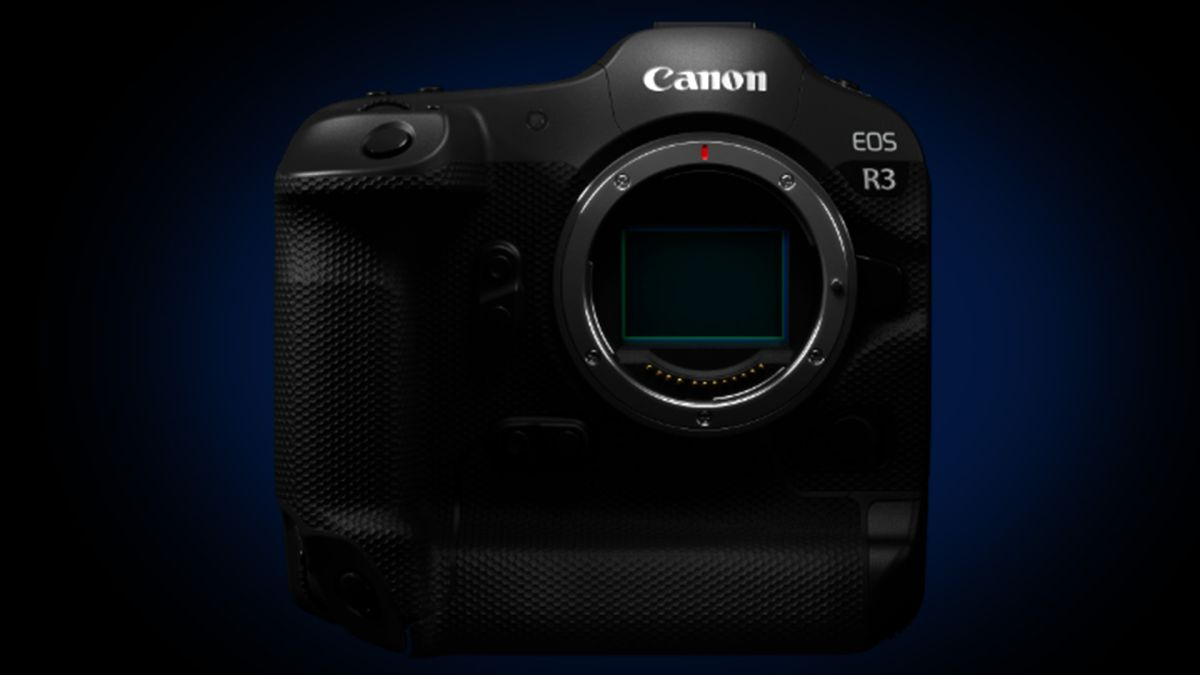 Canon EOS R3: the mirrorless R-series camera goes pro