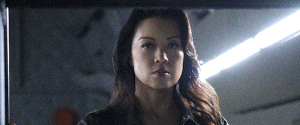 agents of shield may finale