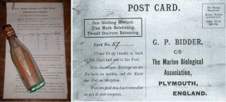 Now considered the oldest message in a bottle, this post card was thrown into the North Sea in 1906.