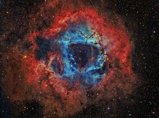 Rosette Nebula by Hancock