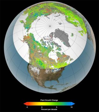 map of vegetation changes on earth globe