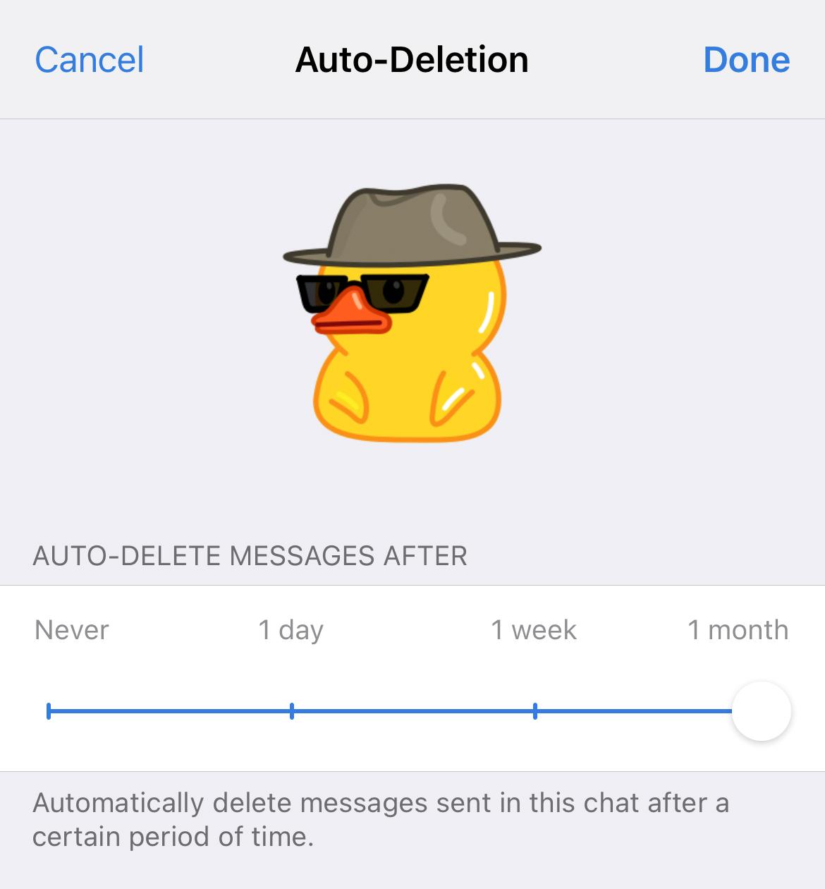The auto deletion option in Telegram