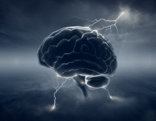 If Genes Dont Turn Off Brains Wiring >> Darpa Wants To Zap Your Brain To Boost Your Memory Live Science