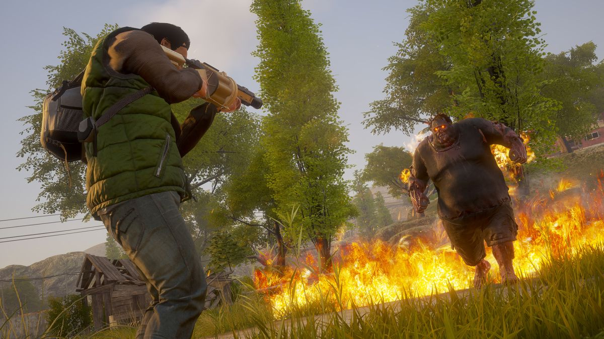 State Of Decay Mmoga
