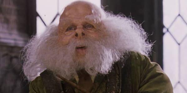 Warwick Davis as Professor Flitwick