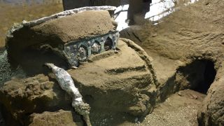 The woodenplatform and shaftof the chariot have now rotted away; to preserve the artifacts' shapes, archaeologistsinjected plaster into the voids they leftin the hardened ash.