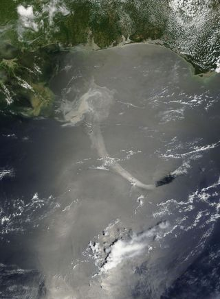 Gulf Oil Slick Looks 'Very Scary' From Space, Cosmonaut Says
