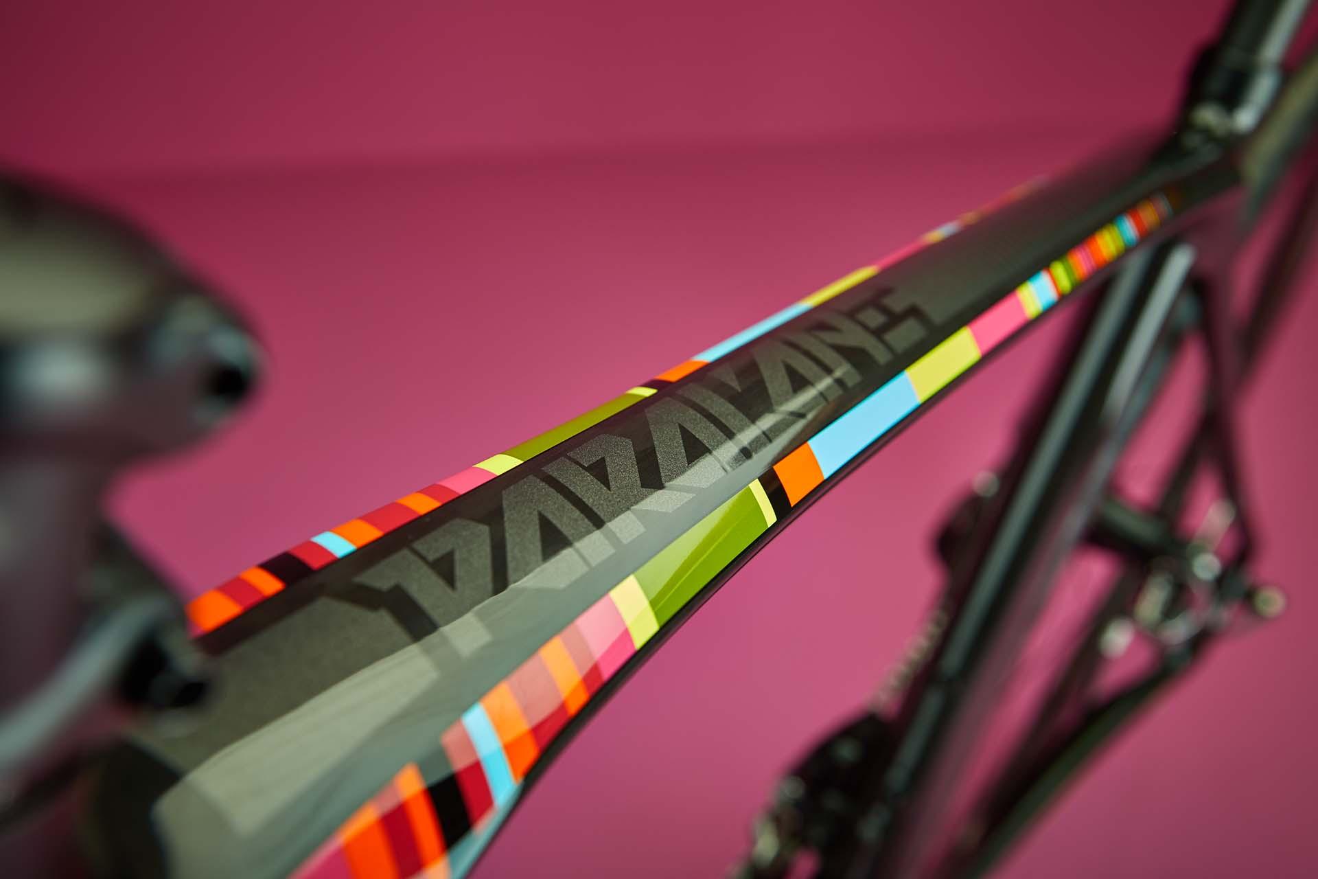 Focus Paralane in Freestyle design (Image: Focus Bikes)