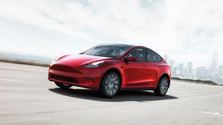 Tesla model y: lede