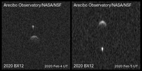 Radar images show the binary asteroid 2020 BX12, which scientists discovered this year.